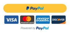 paypal payment buttong